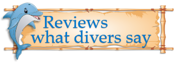 PRODIVER Reviews